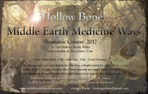 'Hollow Bone' Middle Earth Medicine Ways - 3 modules @ Cae Mabon | Cardigan | United Kingdom